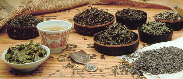 oolong tee wirkung und zubereitung